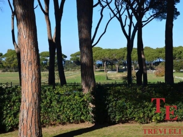 Дом на море вКастильоне-делла-Пеская • Недвижимость Италии