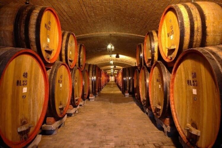 купить винодельню в италии