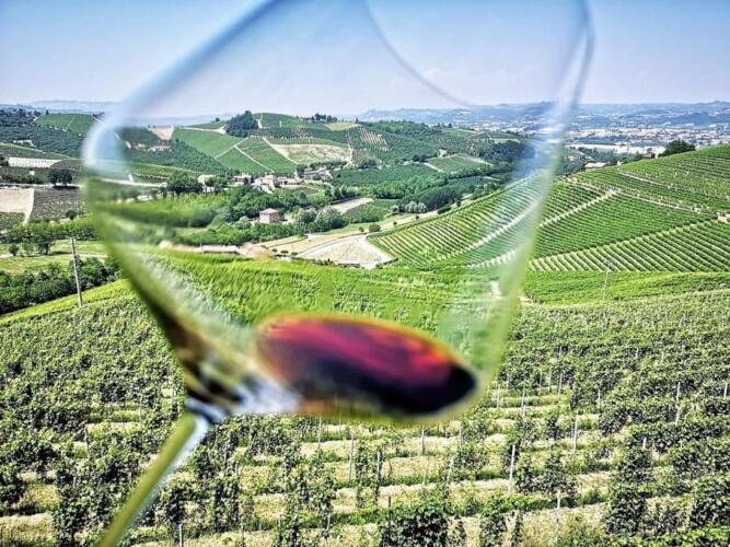 vinogradnik v italii 13 – Вилла для отдыха в Порто-Черво