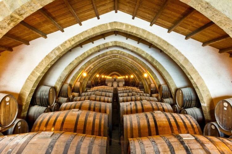 vinogradnik v italii 9 – Вилла для отдыха в Порто-Черво