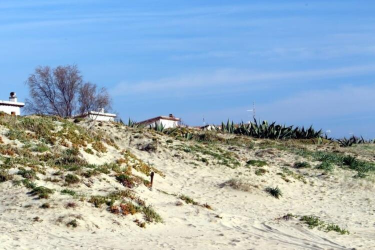 Дом у моря в провинции Рима   Недвижимость Италии