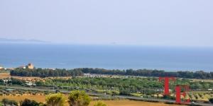 villa s vinogradnikom na more (1)